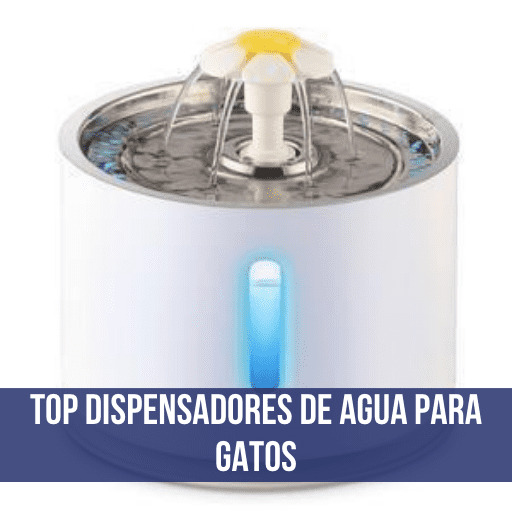 Dispensador de agua para gatos